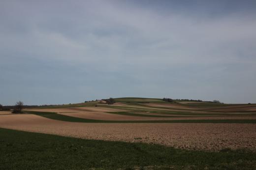 land 004