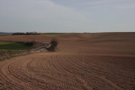 land 010
